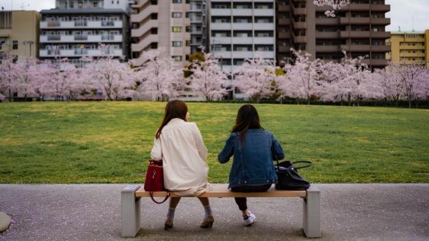 Osaka cerisier Japon